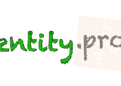 entity.pro