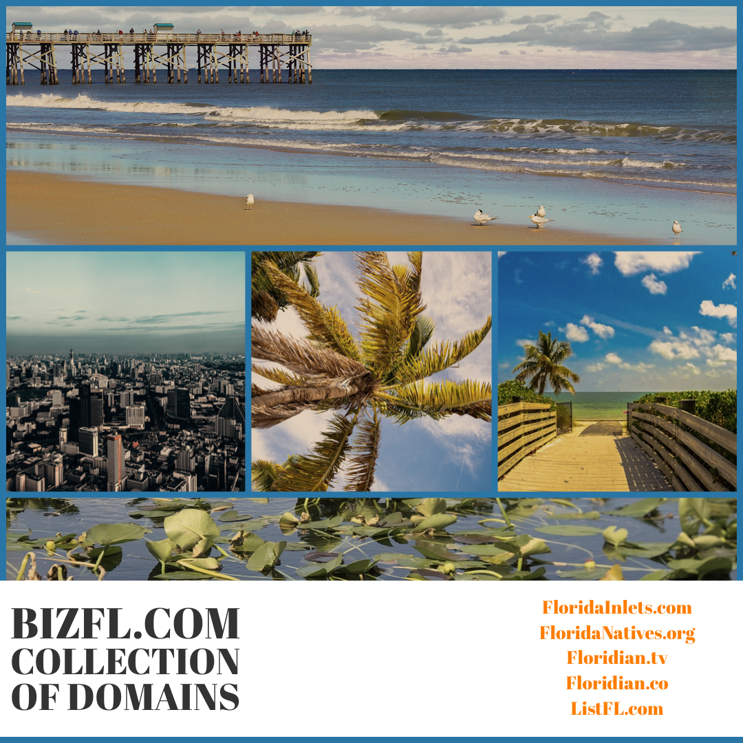 BizFL – Florida Collection of Domains
