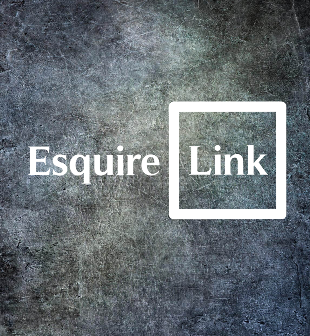 EsquireLink Domains